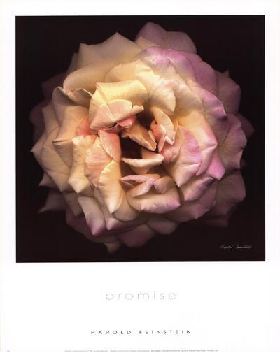 Promise (small)-Harold Feinstein-Art Print