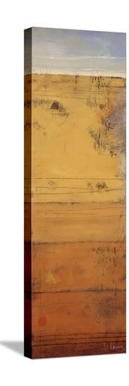 Promontory II-Don Li-Leger-Stretched Canvas Print