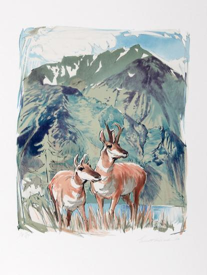 Prong Horn Antelope-Everett Hibbard-Collectable Print