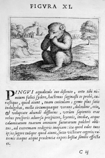Prophecy Figure XI from Prognosticatio Eximii Doctoris Paracelsi, 1536-Theophrastus Bombastus von Hohenheim Paracelsus-Giclee Print