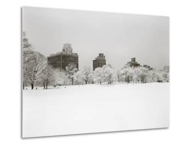 Prospect Park, Brooklyn In Snow - Prospect Park West Buildings-Henri Silberman-Metal Print