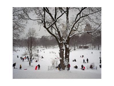 Prospect Park in Snow-Henri Silberman-Photographic Print