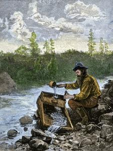 Prospector Washing Pebbles from a Stream Using a Cradle Device to Sparate Gold Nuggets