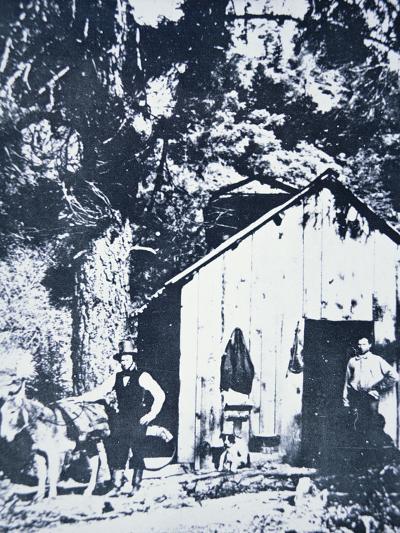 Prospectors at Clear Creek, Near Shasta, California, C.1849--Photographic Print