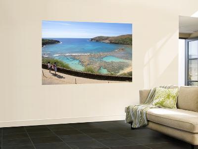 Protected Coral Reef at Hanauma Bay Park-Sabrina Dalbesio-Wall Mural