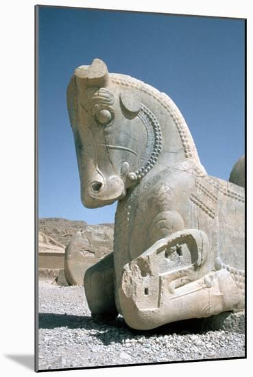 Protome Of A Horse The Apadana Persepolis Iran Photographic Print Vivienne Sharp Art Com