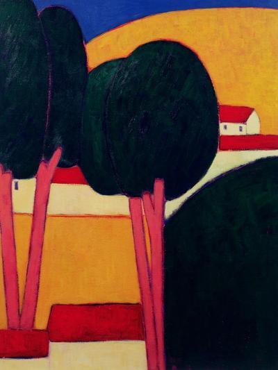 Provencal Farm, 1997-Eithne Donne-Giclee Print