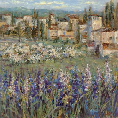 Provencal Village I-Michael Longo-Premium Giclee Print
