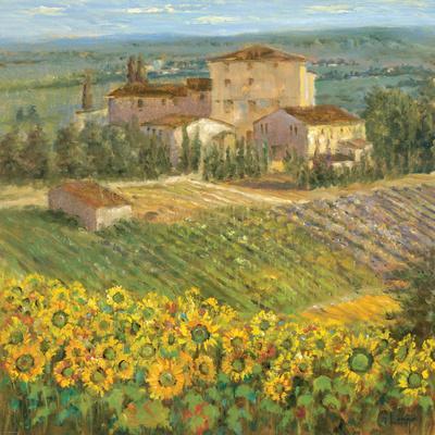 https://imgc.artprintimages.com/img/print/provencal-village-iii_u-l-pxkx050.jpg?p=0