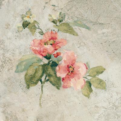 Provence Rose I Red and Neutral-Cheri Blum-Art Print