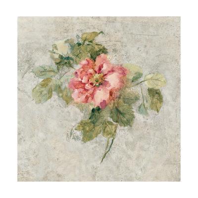 Provence Rose II Red and Neutral-Cheri Blum-Art Print