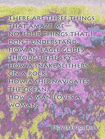 https://imgc.artprintimages.com/img/print/proverbs-30-18-19_u-l-pgf0wf0.jpg?p=0