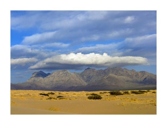 Providence Mountains, Kelso Dunes, Mojave National Preserve, California-Tim Fitzharris-Art Print