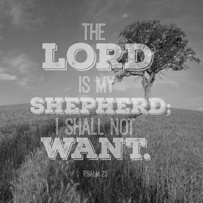 https://imgc.artprintimages.com/img/print/psalm-23-the-lord-is-my-shepherd-field_u-l-f8r4lk0.jpg?p=0