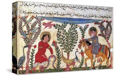 Arabic Physician