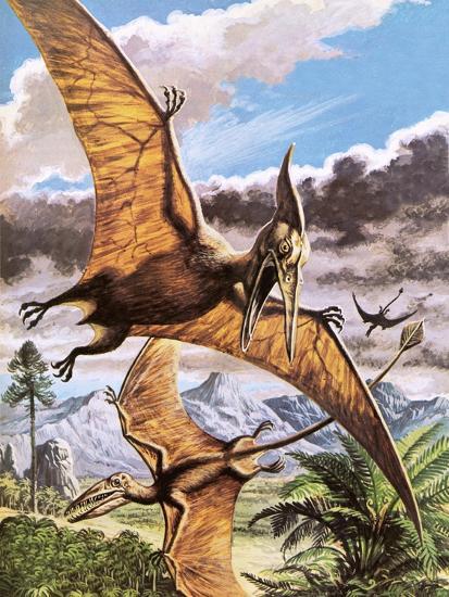 Pteranodon-Payne-Giclee Print