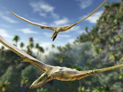 Pterosaurs Flying, Computer Artwork-Roger Harris-Photographic Print