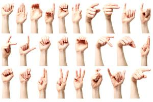 American Sign Language Alphabet by ptnphoto