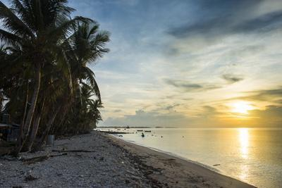 https://imgc.artprintimages.com/img/print/public-beach-at-sunset-funafuti-tuvalu-south-pacific_u-l-q1brxyo0.jpg?p=0