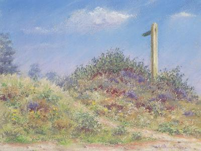 Public Footpath, 2002-Anthony Rule-Giclee Print