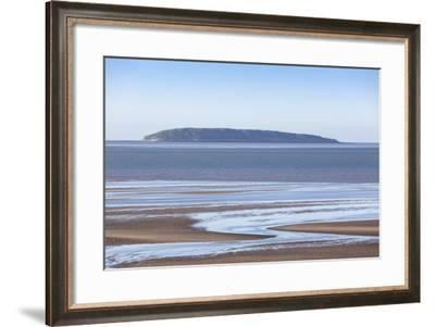 Puffin Island, Anglesey, Wales, United Kingdom, Europe-Charlie Harding-Framed Photographic Print