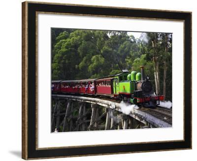 Puffing Billy Steam Train, Dandenong Ranges, near Melbourne, Victoria, Australia-David Wall-Framed Photographic Print
