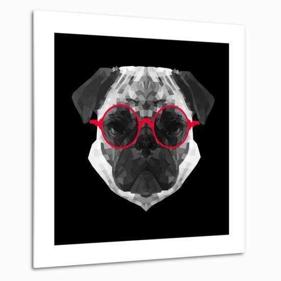 Pug in Red Glasses-Lisa Kroll-Metal Print