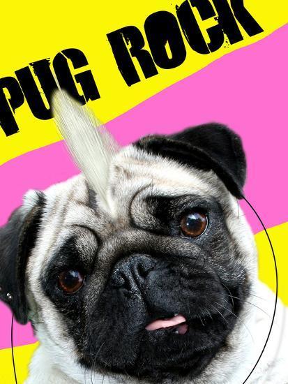 Pug Rock Portrait-Noah Bay-Art Print