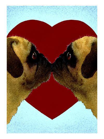 Pugs & Kisses-Will Bullas-Premium Giclee Print