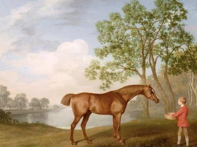 Pumpkin with a Stable-Lad, 1774 (Oil on Panel)-George Stubbs-Giclee Print