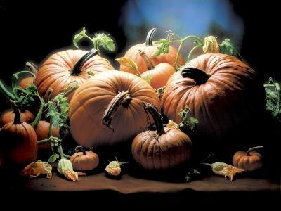Pumpkins-ATU Studios-Photographic Print