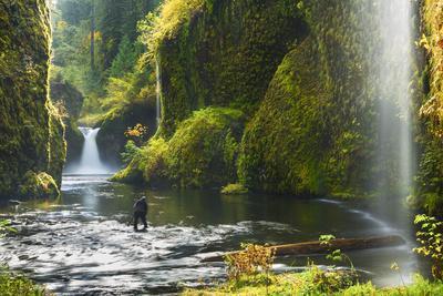 https://imgc.artprintimages.com/img/print/punchbowl-falls-in-eagle-creek-columbia-gorge-oregon-usa_u-l-pn6ojp0.jpg?p=0