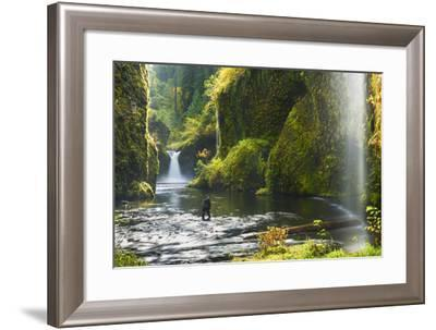 Punchbowl Falls in Eagle Creek, Columbia Gorge, Oregon, USA-Gary Luhm-Framed Photographic Print