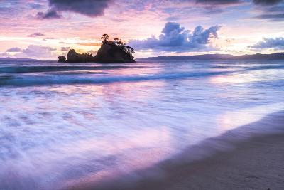 Pungapunga Island at Whangapoua Beach at Sunrise, Coromandel Peninsula, North Island, New Zealand-Matthew Williams-Ellis-Photographic Print