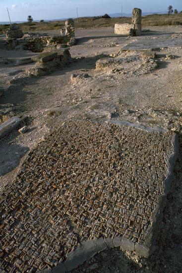 Punic floor mosaic, c.6th century BC-Unknown-Photographic Print
