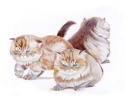 Puppies and Kittens II-D^ Patrian-Art Print
