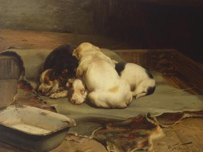 Puppies Sleeping-William Henry Hamilton Trood-Giclee Print