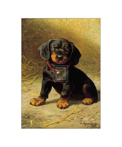 Puppy-H^ Sperling-Art Print