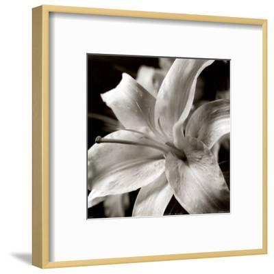 Pure Lily--Framed Art Print