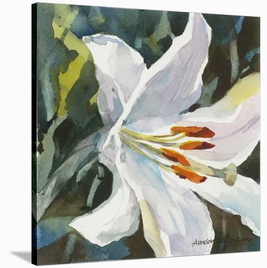 Pure-Annelein Beukenkamp-Stretched Canvas Print