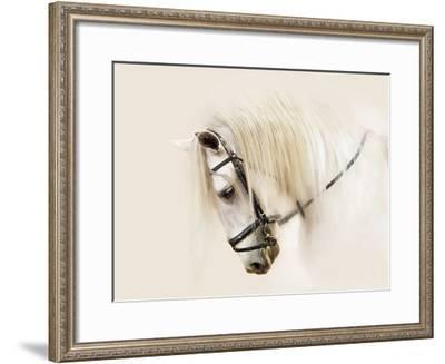Purebred II-Ozana Sturgeon-Framed Art Print