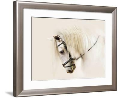 Purebred II-Ozana Sturgeon-Framed Photographic Print