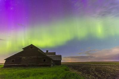 Purple Aurora over an Old Barn in Southern Alberta, Canada-Stocktrek Images-Photographic Print