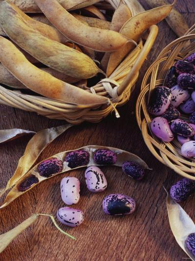 Purple Beans and Pods in Small Baskets-Vladimir Shulevsky-Photographic Print