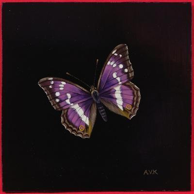 https://imgc.artprintimages.com/img/print/purple-emperor-butterfly-2000_u-l-pugqhv0.jpg?p=0