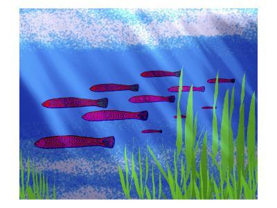 Purple Fish in Calm Blue Water with Seagrass-Rich LaPenna-Giclee Print