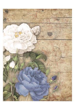 https://imgc.artprintimages.com/img/print/purple-floral-ii_u-l-f7atjz0.jpg?p=0