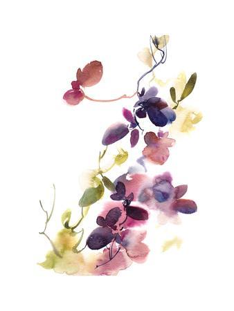 https://imgc.artprintimages.com/img/print/purple-flower-majesty_u-l-q13idvb0.jpg?p=0