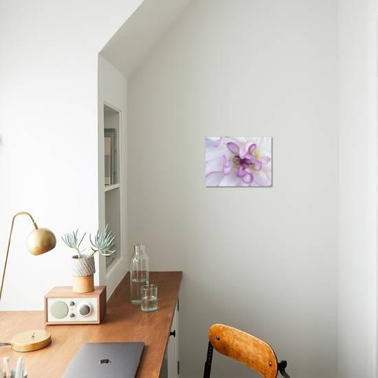 Purple Flower Photographic Print Michele Westmorland Art Com