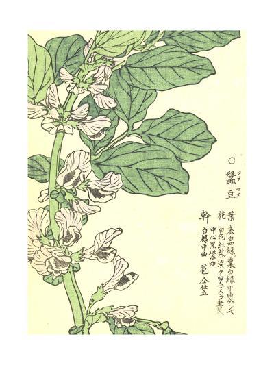 Purple Flowers on Green Stem with Asian Writing--Art Print